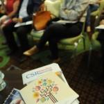 Seminar CSRmedia.ro 2016 - Foto Karina Knapek-0003